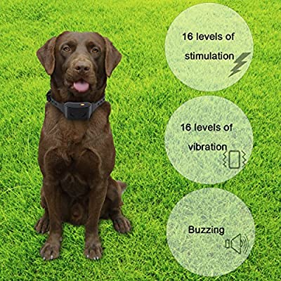 [MAGISOR] Remote Controlled Dog Training Collar, Rechargeable and IPX7 Waterproof Shock Collar For All Dogs, TONE/VIBRA/SHOCK, 650yds Remote Training Range Barking Collar
