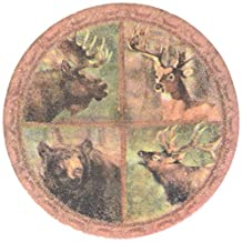 Thirstystone Stoneware Wildlife Collage Coaster, Multicolor