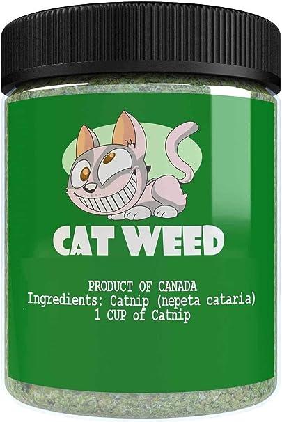 Amazon Com Cat Weed Catnip Has Maximum Potency Premium Blend Nip