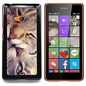 Stuss Case / Funda Carcasa protectora - Gato lindo Amigos - Nokia Lumia 540