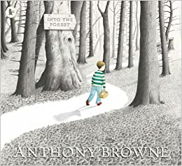Image result for into the forest anthony browne