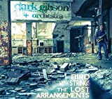 Bird with Strings: Lost Arrangements by Clark Gibson