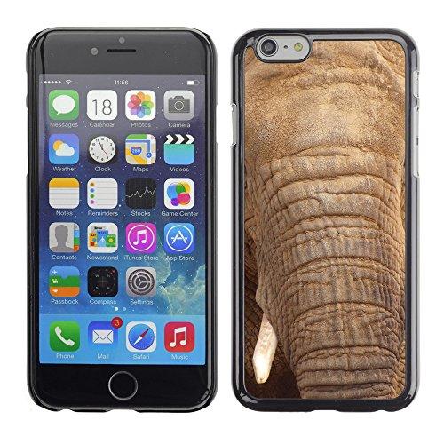 """Premio Sottile Slim Cassa Custodia Case Cover Shell // V00002193 l'éléphant // Apple iPhone 6 6S 6G PLUS 5.5"""""""