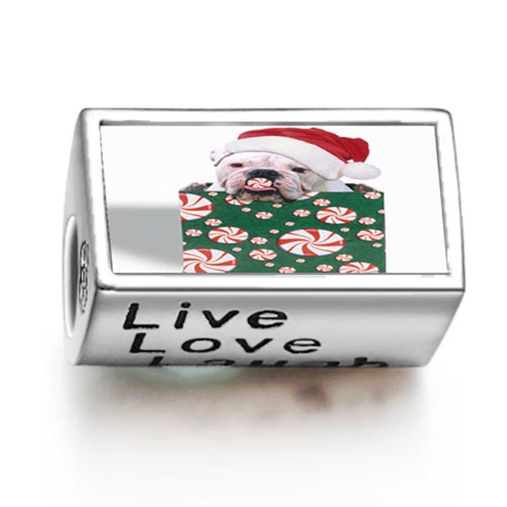 loyallove Weihnachtshund in Geschenk-Box Foto Live Love Laugh Charme ...
