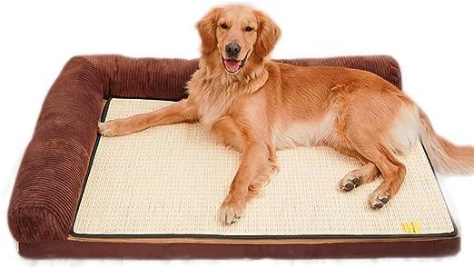 Cama para Perros, Almohada para Colchón Lavable para Perros Y ...