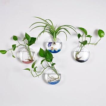 Amazon.de: 4 Stück aus Glas zum Aufhängen Wand Vase Flower ...