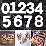 12 inch 0-9 Number Cake Molds for DIY Cake Stencils, Arabic Number Cake Templates for DIY Wedding Birthday Anniversary Cake