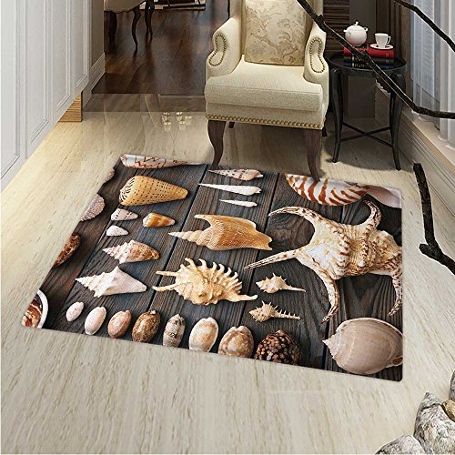 Seashells Area Rug Carpet Seashell Background Still Life Spiral Wooden Table Rural Rustic Country Theme Living Dinning Room Bedroom Rugs 3'x4' Multicolor