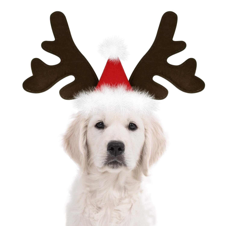 Kyjen Christmas Doggy Antlers Large