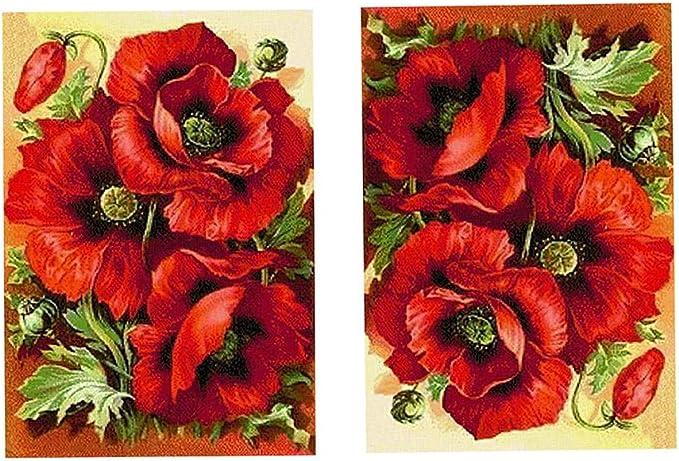 Ogquaton Durable DIY 5d Pintura Bordado de Diamantes Kit de Punto de Cruz Flor Animal decoraci/ón del hogar Flor de Amapola roja