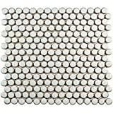 SomerTile FKOMPR40 Penny Porcelain Mosaic Floor and Wall Tile, 12'' x 12.625'', Silk White/Brown