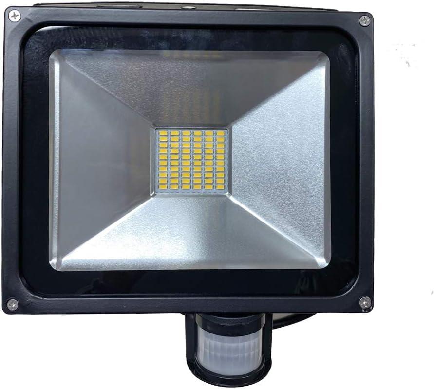 2 Stück 20W/30W/50W/80W LED Fluter SMD Lampe + Bewegungsmelder Flutlichtstrahler (kaltweiss 30W) Warmweiss 50w