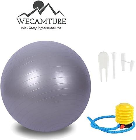 65 cm pelota para ejercicios de equilibrio, bola con aire pump ...