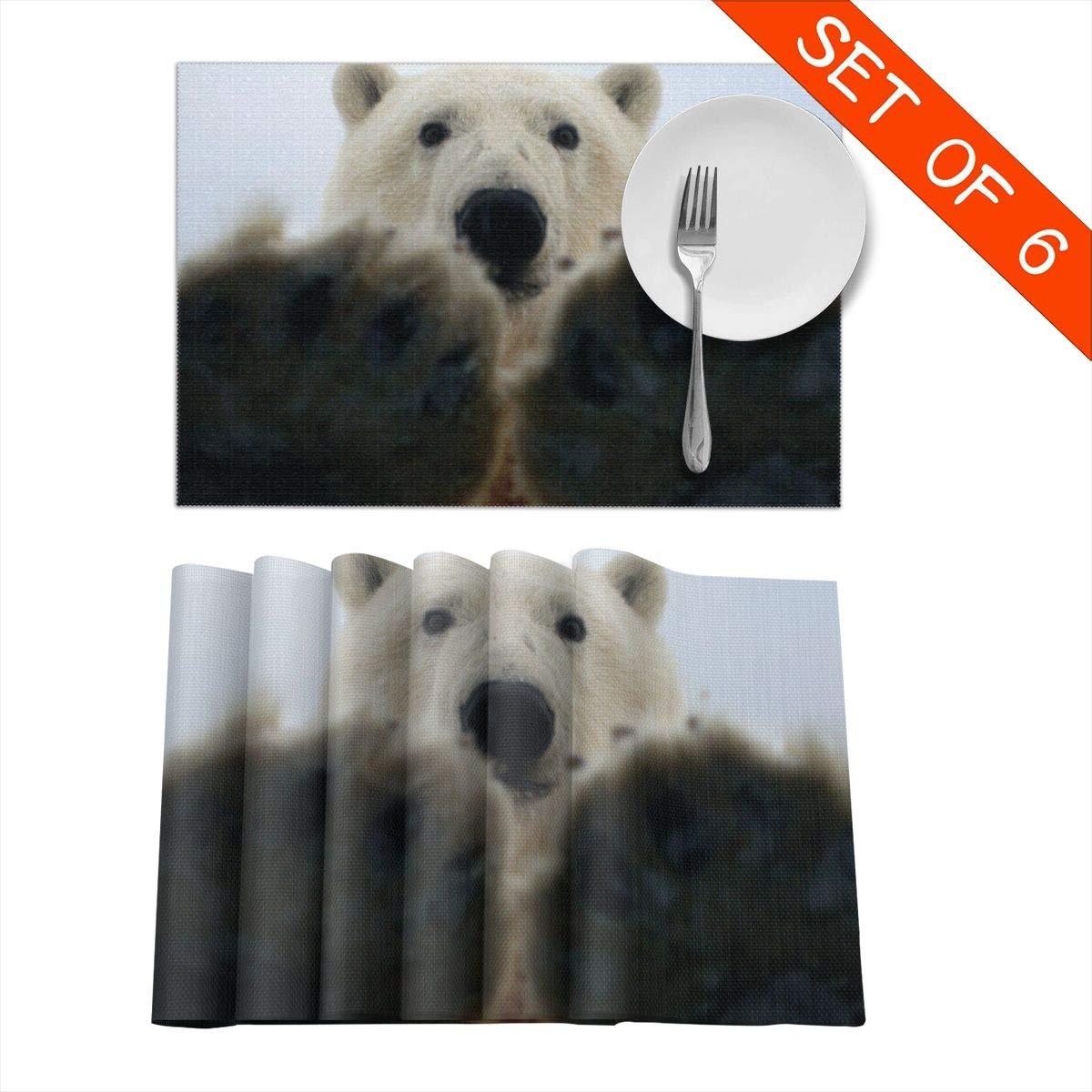 URESBFG1 Salvaje Animal Polar Oso Color Manteles individuales para ...