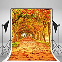 5x7ft Yellow Natural Scenic Photography Backdrops Autumn Backdrop Beautiful Leaves Trail Photo Studio Background WY00045