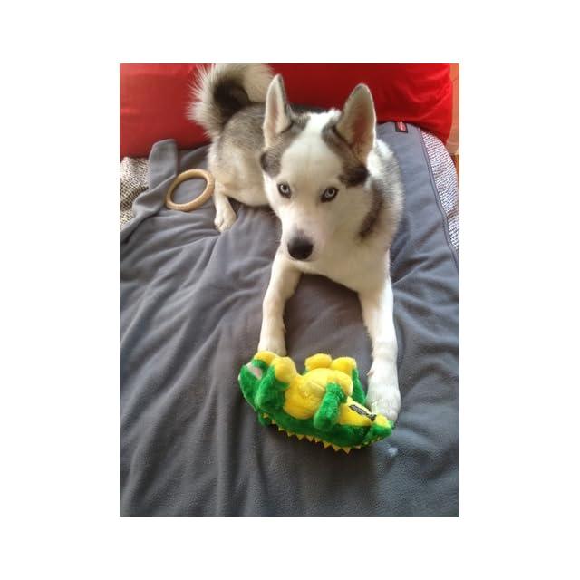 Outward Hound Kyjen  31008 Egg Babies Platypus Plush Dog Toys Squeak Toy Dog Puzzle, Large, Brown