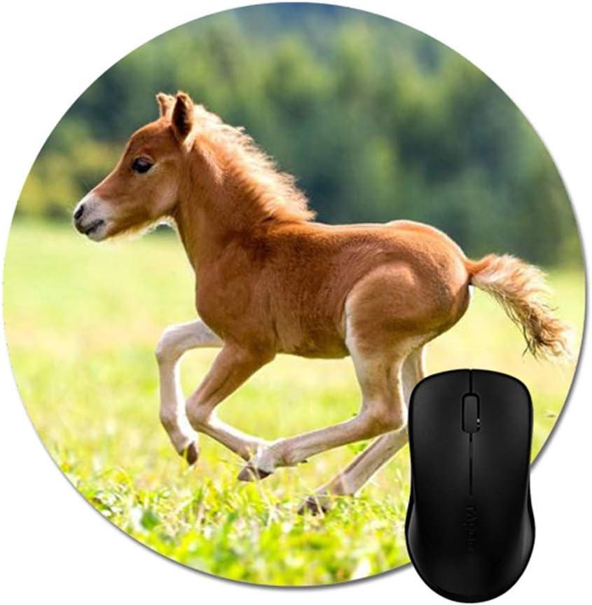 N\A Wild Horses Mouse Pads Accesorio de Oficina para ...