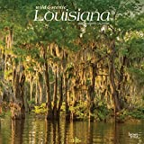 Louisiana Wild & Scenic 2020 12 x 12 Inch Monthly Square Wall Calendar, USA United States of America Southeast State Nature