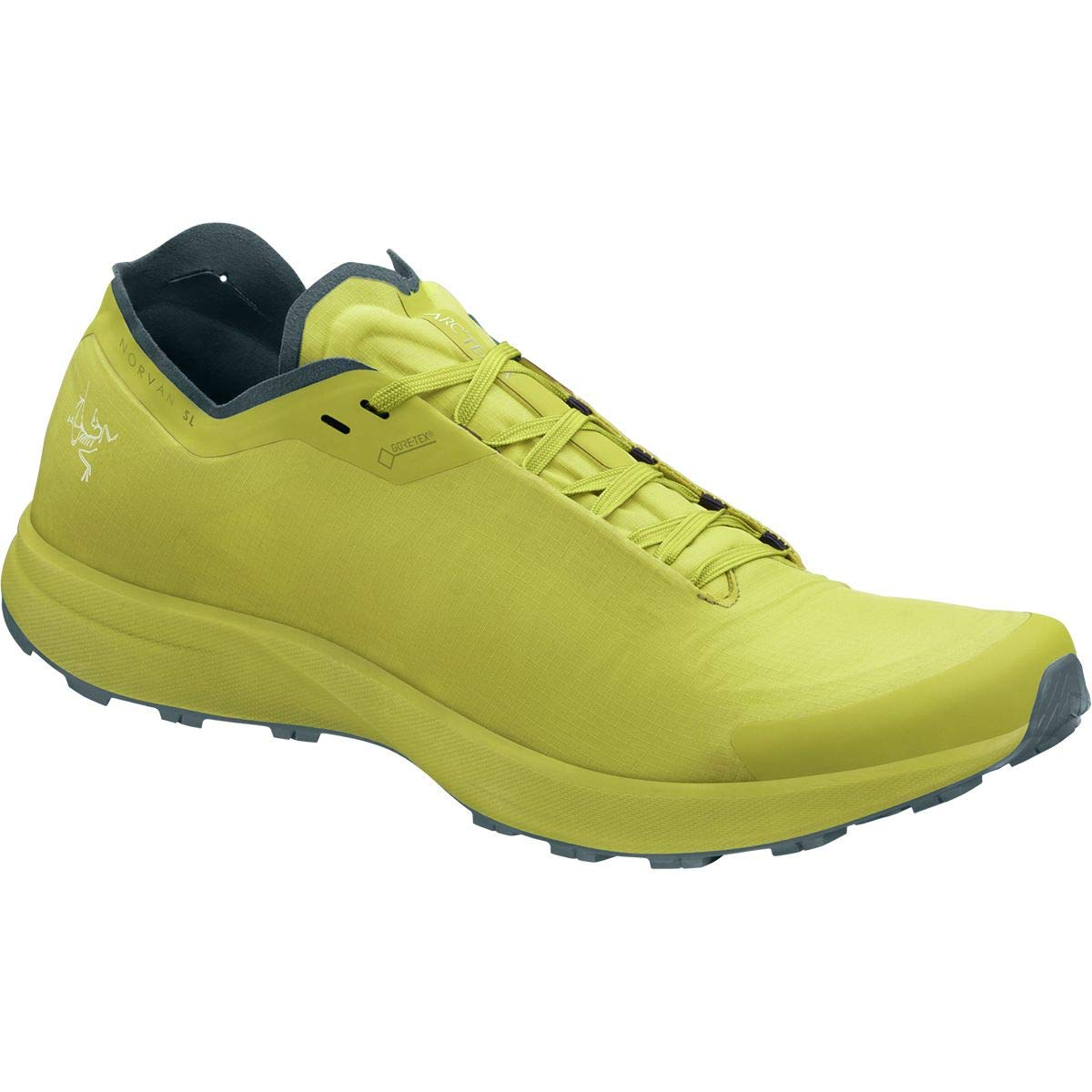 【送料無料/新品】 [アークテリクス] メンズ ランニング Norvan SL GTX GTX Norvan Running Shoe [並行輸入品] B07NZMSP5J B07NZMSP5J US-7.0/UK-6.5, 調理道具専門店 エモーノ:f8728f4c --- woxpedia.com