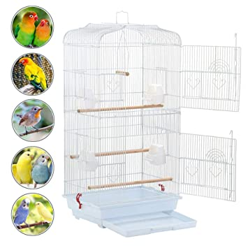 Agree, Cockatiel sitting at bottom of cage apologise