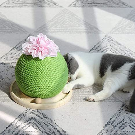 AUOKER gato Rascador de cactus con bola divertida forma de bola de cactus sisal gato rascador con flores y hierba gata centro de actividades para moler patas y jugar juguete interactivo para gatos
