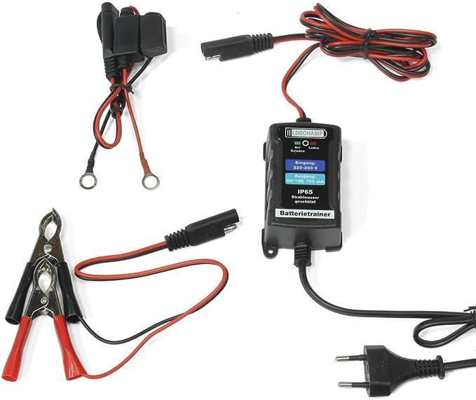Lodchamp 146303 Batterietrainer 6v 12v 750mah Ip65 Erhaltungsladegerät Batterieladegerät Erhaltungsgerät Für Kfz Auto Motorrard Quad Atv Boot Silber Auto
