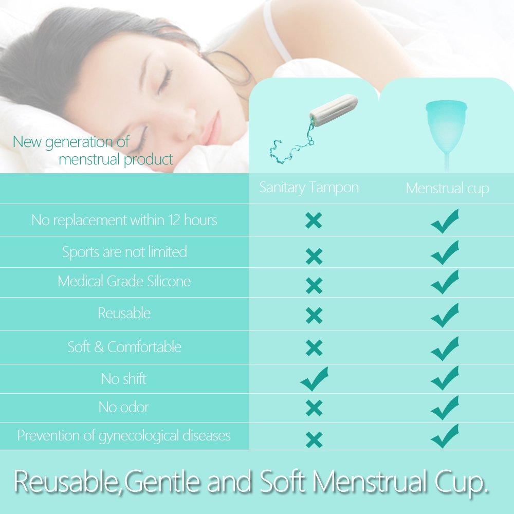 SPEQUIX - Juego de copa menstrual y de equipo para esterilización: Amazon.es: Salud y cuidado personal