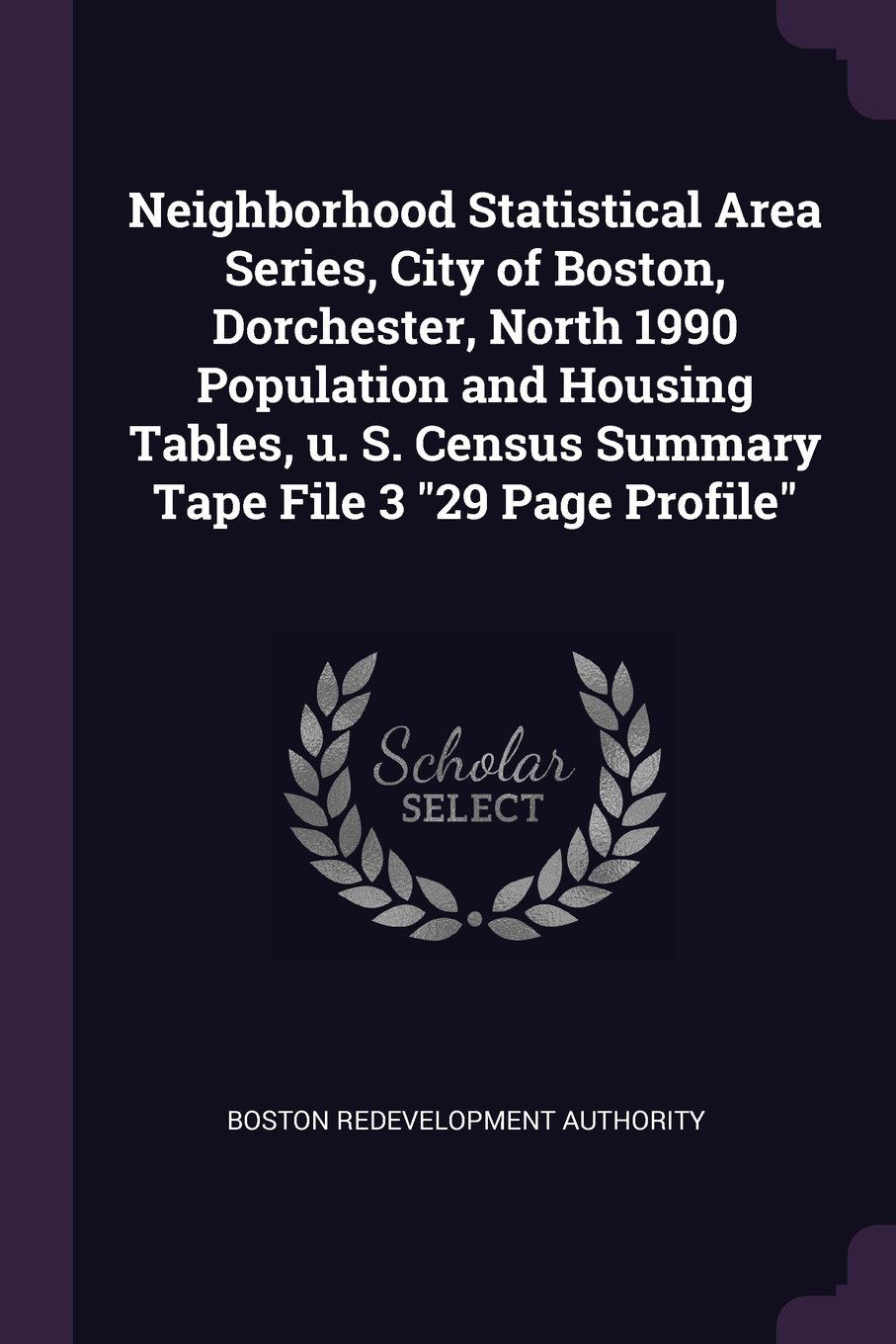 Download Neighborhood Statistical Area Series, City of Boston, Dorchester, North 1990 Population and Housing Tables, U. S. Census Summary Tape File 3 29 Page Profile pdf