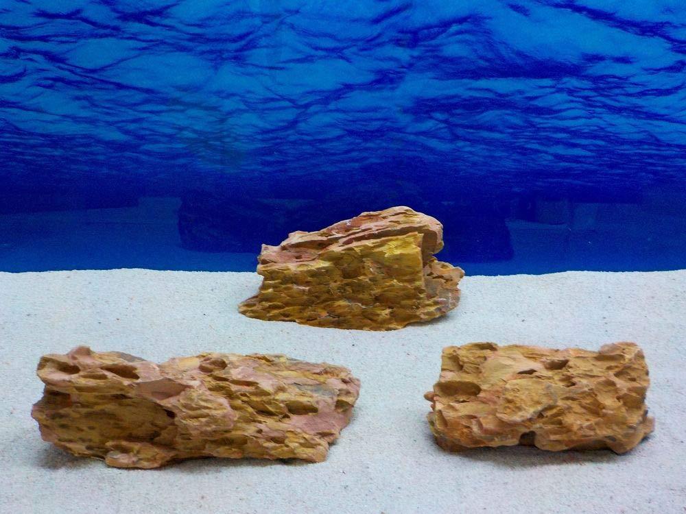 AQUARISTIKWELT24 No. 7695 Aquarium Dragonstone Decorative Stones 64 Original Photo Size XL 20-45 cm