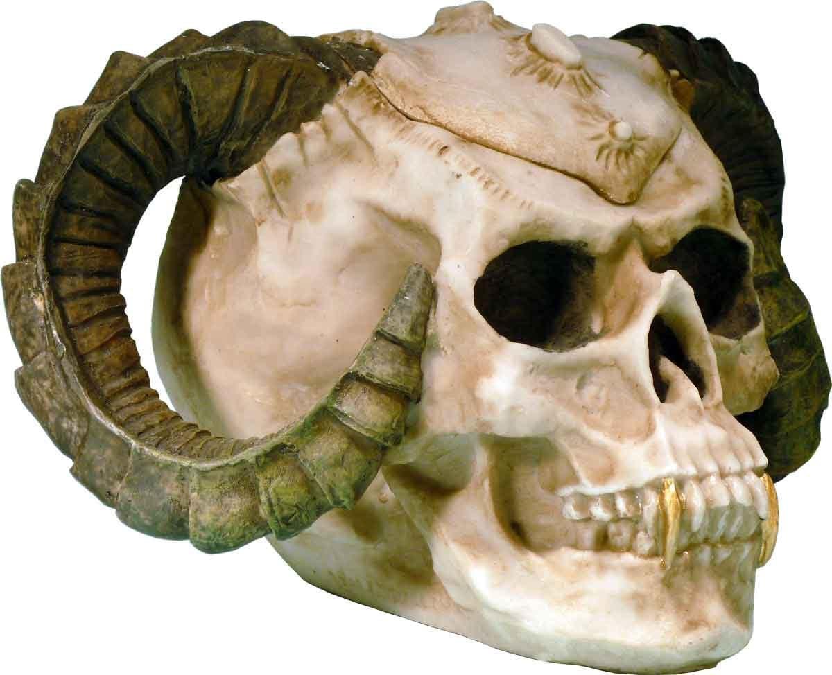 Halloween Rasta Voodoo Demon Dead Head Human Skull Ashtray Candy Dish #2894-20