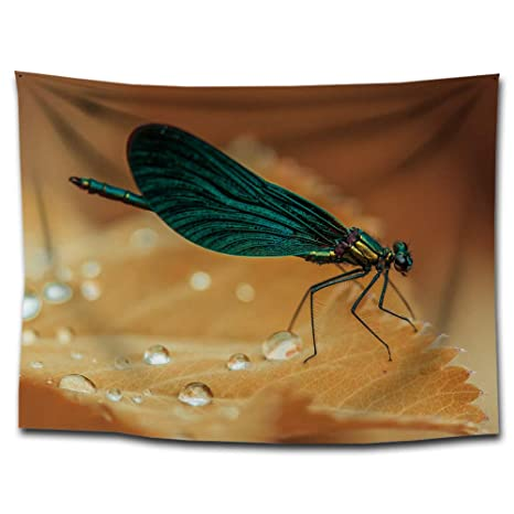 Hillhead Selva de Insectos de impresión Tapiz Manta de Yoga ...