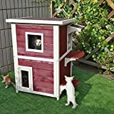 Petsfit 2-Story Weatherproof Outdoor Kitty Cat House/Condo/Shelter with Escape Door 20''Lx20''Wx32''H