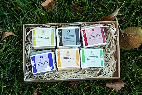 Brenner&Co Handmade Organic Soap Set, 15.5 Oz, 100% Natural Essentials Product, 6 Different Scents, Made in Ukraine