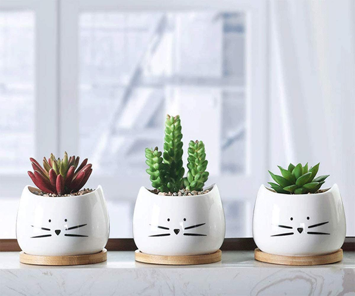 Black*1 MANRS 8cm Ceramic White Square NO.3 Succulent Plant Pot//Cactus Plant Pot with Bamboo Tray Package 1 Pack of 3
