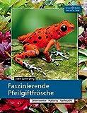 Faszinierende Pfeilgiftfrösche: Lebensraum, Haltung, Nachzucht (Terrarien-Bibliothek)