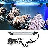 Amzdeal Aquarium Light Waterproof Fish Tank Light 11 Inch 30 LED with US Plug (Blue)