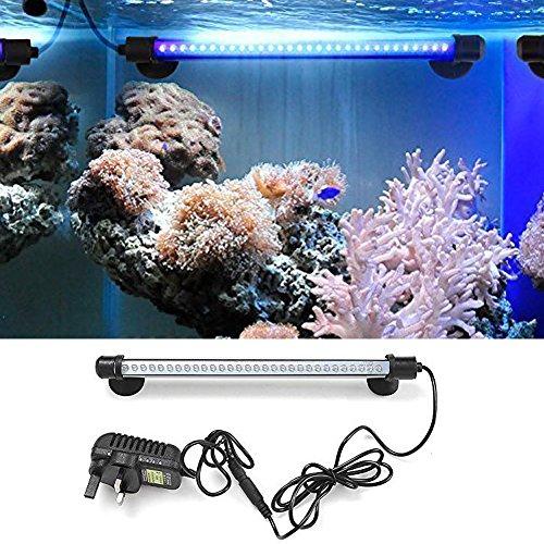 amzdeal Fish Tank Light LED Aquarium Light Aquarium Waterproof with US Plug Blue Light by amzdeal