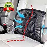 Double Mesh Lumbar Support Chair Cushion Waist Lower Back Supportive Cushions,Ice Silk Chair Seating Support Cushion for Car Home Office,Upgraded Breathable Seat Chair Sofa Lumbar Back Waist Support