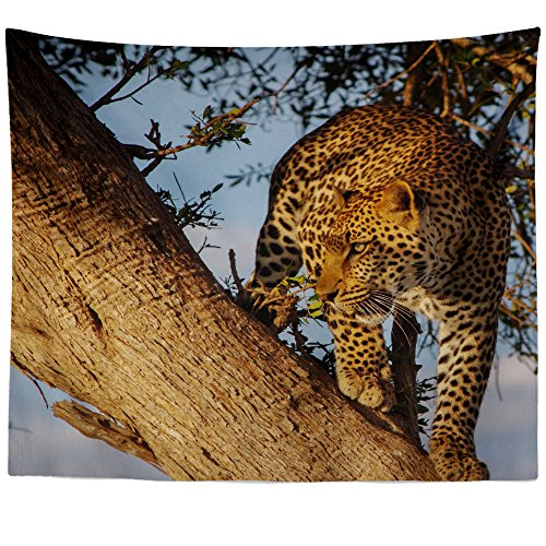 Flora Tapestry Wall Hanging - Westlake Art - Safari Leopard - Wall Hanging Tapestry - Picture Photography Artwork Home Decor Living Room - 26x36 Inch