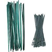 Lifreer 50 varillas de bambú de 30 cm, color verde con 50 lazos ajustables para plantas para flores y jardín.