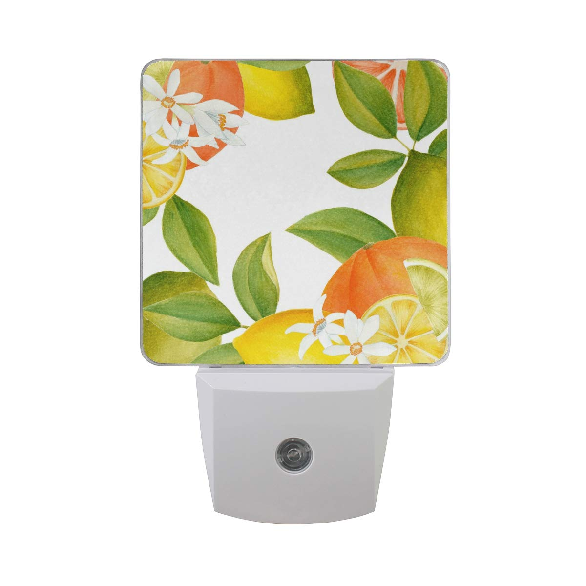 OuLian Night Light Watercolor Citrus Clipart Led Light Lamp for Hallway, Kitchen, Bathroom, Bedroom, Stairs, DaylightWhite, Bedroom, Compact