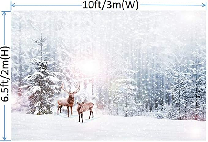Waw Microfibre Winter Background Photography Christmas Camera Photo