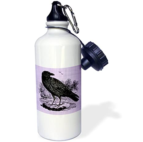 White 3dRose wb/_223277/_1Black Raven Illustration on Purple Background Sports Water Bottle 21 oz