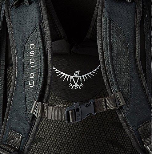 Osprey Packs Farpoint 55 Travel Backpack, Volcanic Grey, Medium/Large