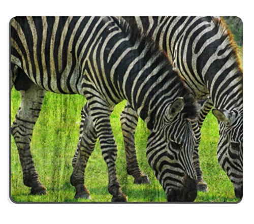 msd-natural-rubber-mousepad-zebra-the-cement-painting-concept-image-35317262