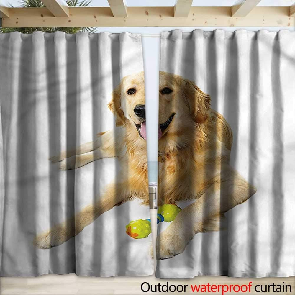 warmfamily Golden Retriever Drape - Cortina para pérgola de Perro ...