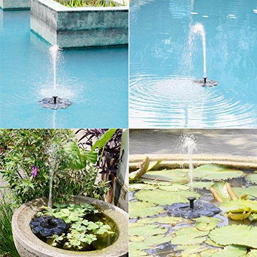 Qualife Smart Solar Fountain Pump for Bird Bath,1.6W Solar Powered Bird Bath Fountain,Birdbath Fountains Solar Power, Solar Water Fountain for Garden Birdbath Pond by Qualife (Image #6)