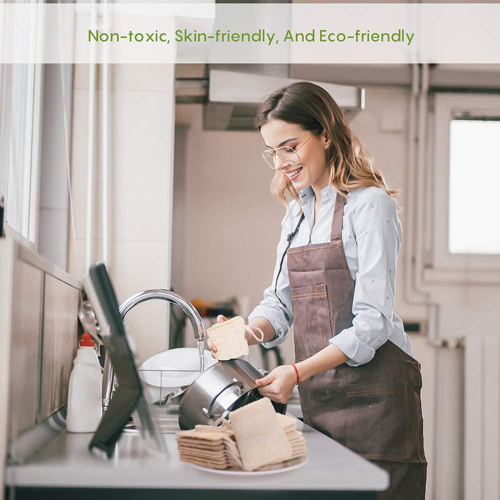 Z/éro D/échet  Plastique Gratuit 100/% Biod/égradable 6 PCS /Éponges /à Vaisselle en luffa Naturel Blanc /Éponge /à Vaisselle Eco,laveur de Vaisselle Pour le Nettoyage des Plats de Cuisine