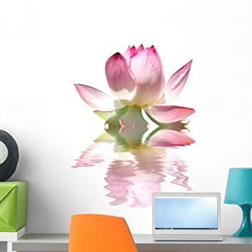 Amazon Wallmonkeys Pink Lotus Flower Wall Decal Peel And Stick