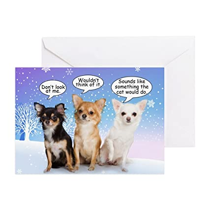 cafepress funny chihuahua christmas card greeting card note card birthday card